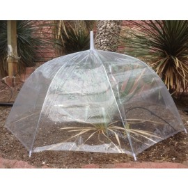 Rain protection: Transparent dome umbrella, dia. 85 cm
