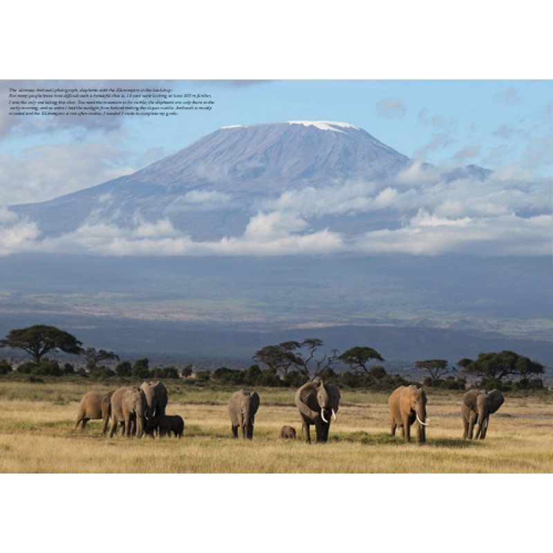 Page Photobook Amboseli National Park in Kenya